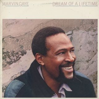 Marvin Gaye / Dream Of A Lifetime