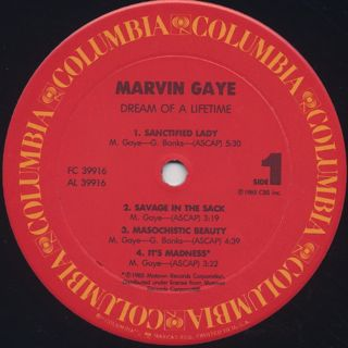 Marvin Gaye / Dream Of A Lifetime label