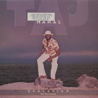Taj Mahal / Evolution (The Most Recent)
