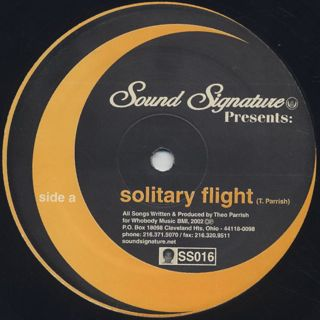Theo Parrish / Solitary Flight