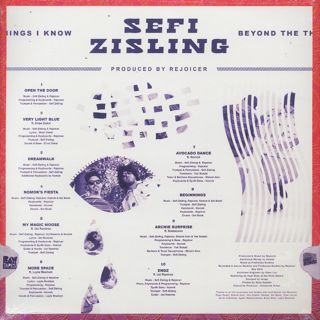 Sefi Zisling / Beyond The Thing I Know back