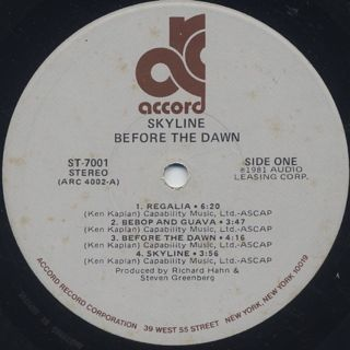 Skyline / Before The Dawn label
