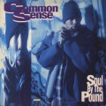 Common Sense / Soul By The Pound / Can-I-Bust / Heidi Hoe