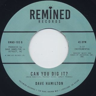 Dave Hamilton / Ain't It A Groove c/w Can You Dig It? back