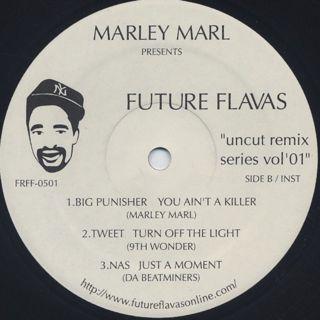 Marley Marl / Future Flavas