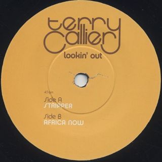 Terry Callier / Lookin' Out (7