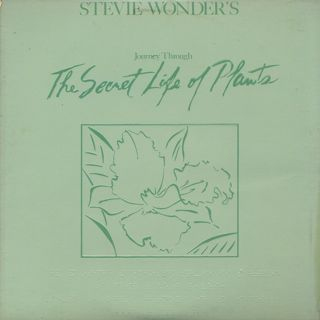 Stevie Wonder / Journey Through The Secret Life Of Plants