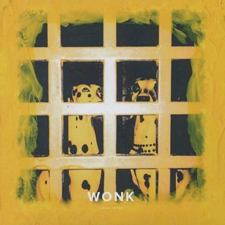 Wonk / Castor