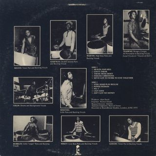 20th Century Steel Band / Warm Heart Cold Steel back
