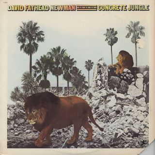 David Fathead Newman / Concrete Jungle