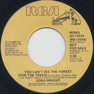 Edna Wright / You Can't See The Forest (For The Trees) back