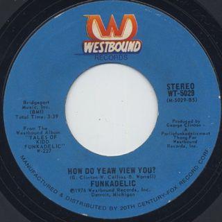 Funkadelic / Undisco Kidd c/w How Do Yeaw View You? back