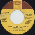 Marvin Gaye / After Dance c/w Feel All My Love Inside