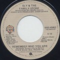 Sly and The Family Stone / Remember Who You Are (7