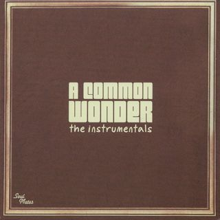 Amerigo Gazaway / A Common Wonder The Instrumentals front