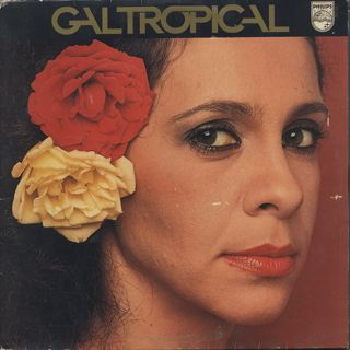 Gal Costa / Gal Tropical front