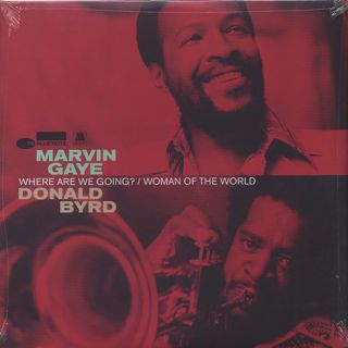 Marvin Gaye / Where Are We Going?