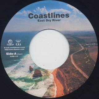 Coastlines / East Dry River back