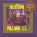 DJ Kiyo / Autum Madness 2