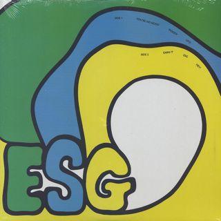 ESG / S.T.