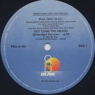 Was (Not Was) / Out Come The Freaks (12