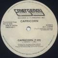 Capricorn / Capricorn