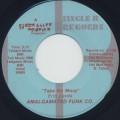 Amalgamated Funk Co. / I Wanna Take You Out