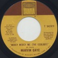 Marvin Gaye / Mercy Mercy Me (The Ecology)-1
