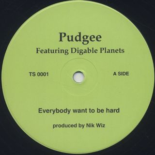Pudgee / Everybody Want To Be Hard