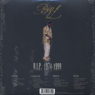 Big L / The Big Picture 1974-1999 back