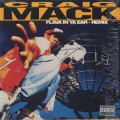 Craig Mack / Flava In Ya Ear (Remix)