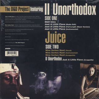 D&D Project Featuring II Unorthodox / Just A Little Flava back