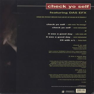 Ice Cube / Check Yo Self back