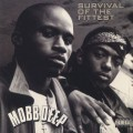 Mobb Deep / Survival Of The Fittest