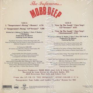 Mobb Deep / Temperature's Rising back