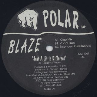 Blaze / Just A Little Different back