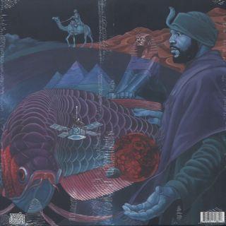 Shafiq Husayn / The Loop back