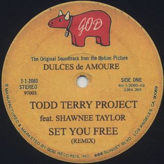 Todd Terry Project / Set You Free front