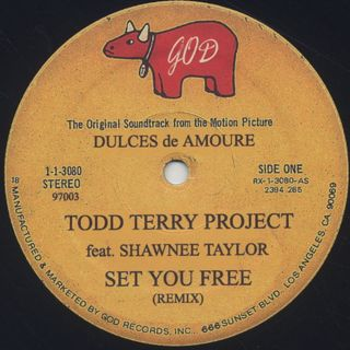 Todd Terry Project / Set You Free back