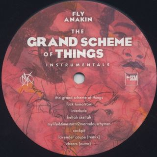 Fly Anakin / The Grand Scheme Of Things label