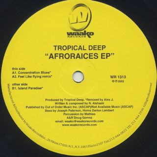 Tropical Deep / Afroraices EP back