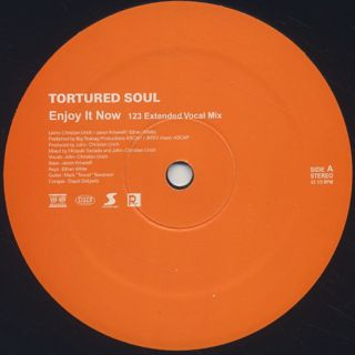 Tortured Soul / Enjoy It Now
