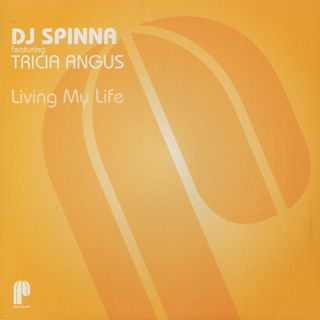 DJ Spinna / Living My Life