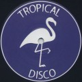 V.A. / Tropical Disco Records Volume Fifteen