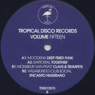V.A. / Tropical Disco Records Volume Fifteen back