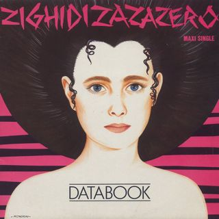 Databook / Zighidizazazero