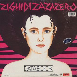 Databook / Zighidizazazero back
