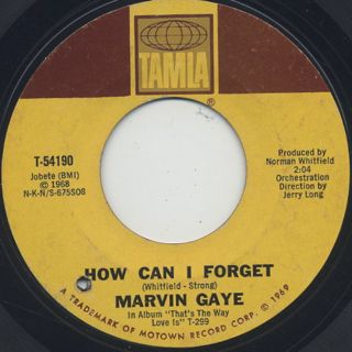 Marvin Gaye / How Can I Forget You