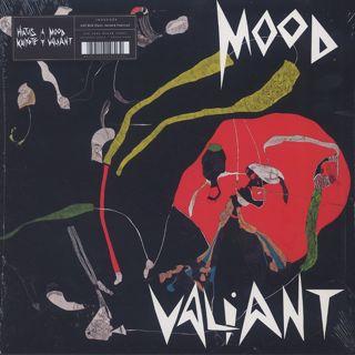 Hiatus Kaiyote / Mood Valiant